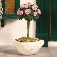 3845 Garden Rose