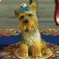 5605  Yorkshire Terrier
