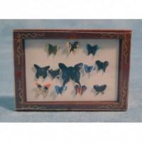 Butterfly Box D799
