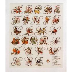 Flora & Fauna Sampler