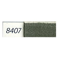 8407 Medicis
