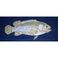 Brindled Grouper
