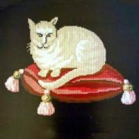 Cream Cat