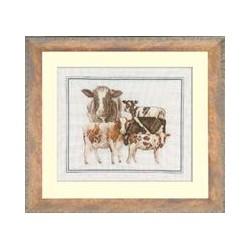 Lnt-  The Farm-Cows