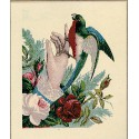 Anm-La Main et l'Oiseau